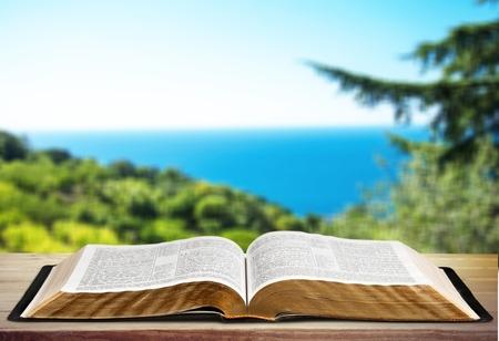 bible ten commandments: Book.
