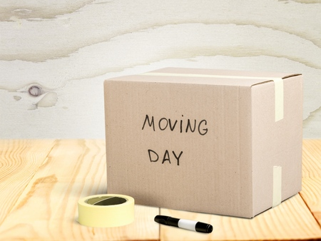 carton: Casa movil.