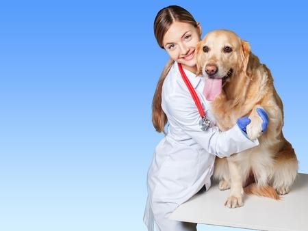 veterinarian: Veterinarian.