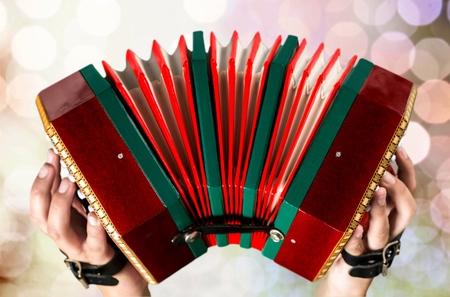 an accordion: Acorde�n M�sica.