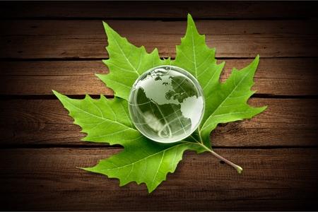 green world: Alternative Energy.