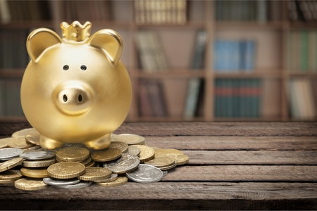 white piggy bank: Piggy Bank.