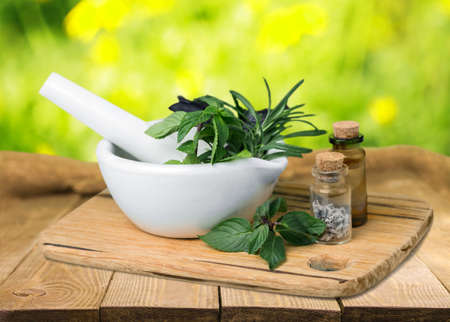 bio medicine: Herb. Stock Photo