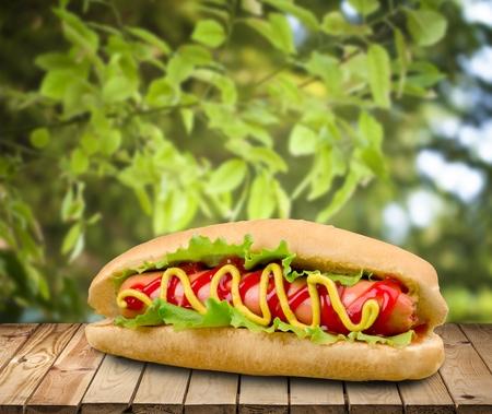 dog isolated: Hot Dog.