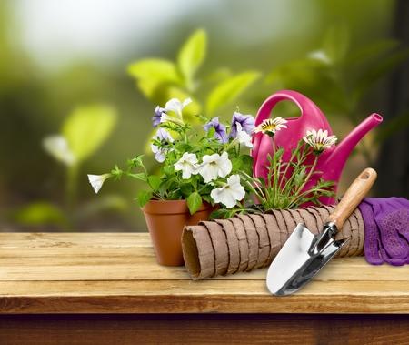 gardening equipment: Gardening Equipment. Stock Photo