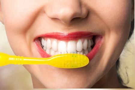 dientes: Dientes humanos.