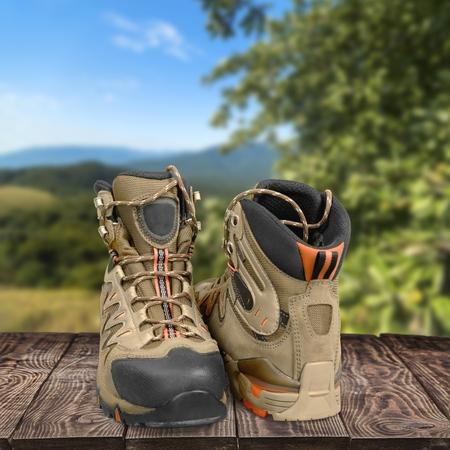 hiking boot: Hiking Boot.