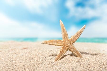 winter escape: Beach.