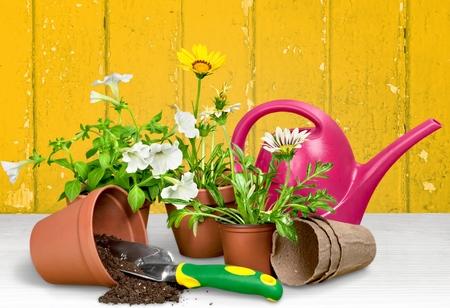 the equipment: Gardening Equipment. Stock Photo