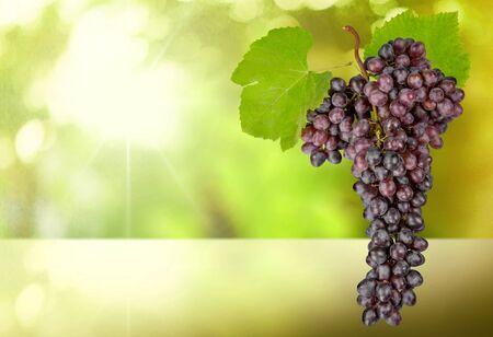 cut outs: Grape. Stock Photo