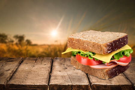 cereal plant: Sandwich. Stock Photo