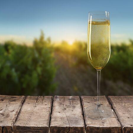 champagne glasses: Champagne.