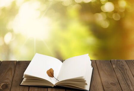 literatura: Al aire libre.