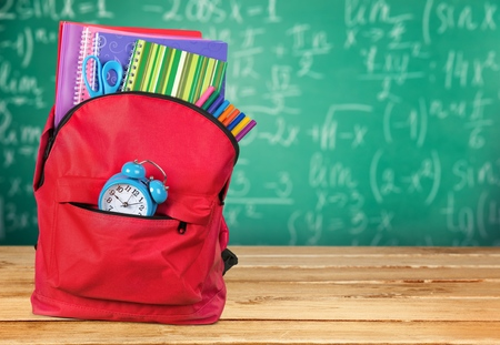 school backpack: Backpack.