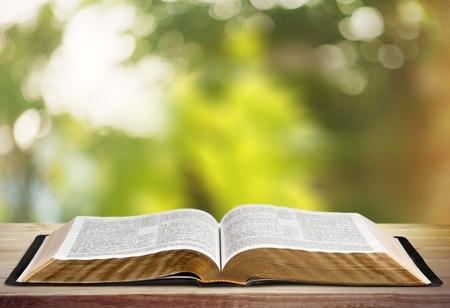 bible ouverte: Livre.