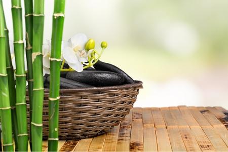 lastone therapy: Bamboo.