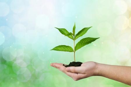 origins: Environmental.