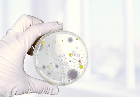 petri: Petri.