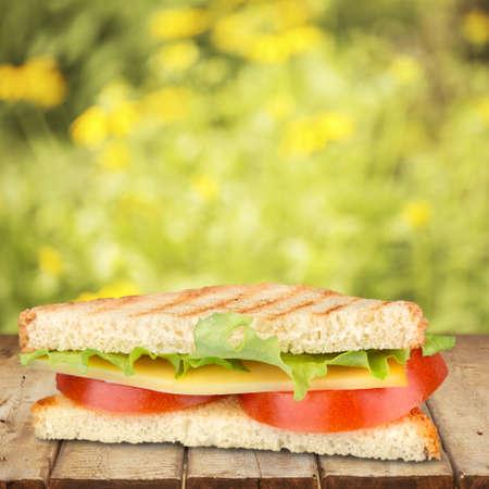 diet dinner: Sandwich. Stock Photo