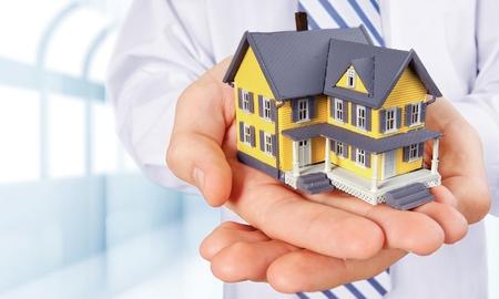 estate: Real Estate Agent.