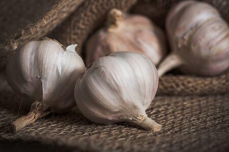 garlic: Garlic. Stock Photo