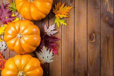 autumn background: Background.