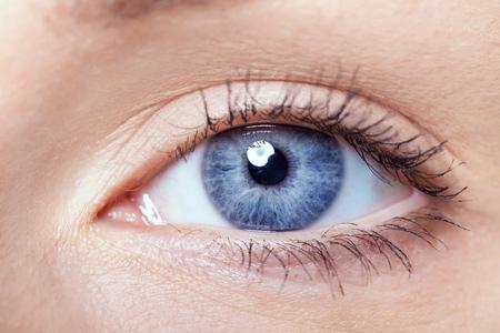 blue eye: Adult.