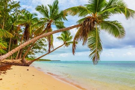 playas tropicales: Playa.