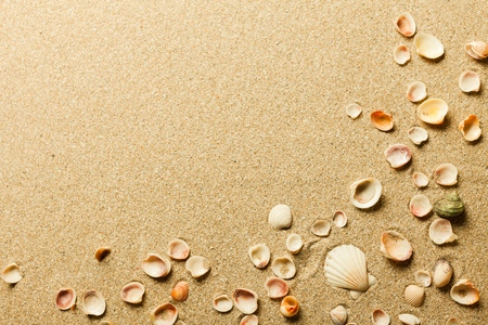 tropical beaches: Sand.