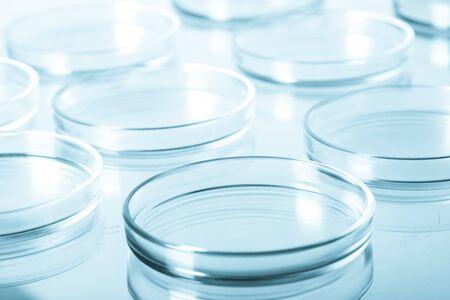 petri: Petri Dish.