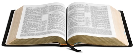 bible ten commandments: Book.