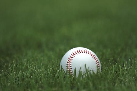 Honkbal. Stockfoto