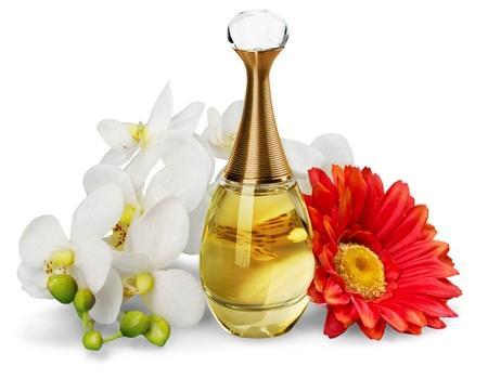 allurement: Perfume.