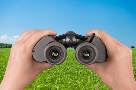 vigilant: Vision concept