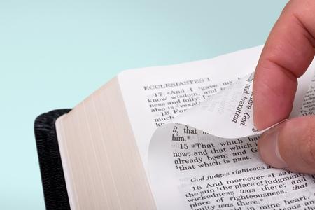 testaments: book of Bible.