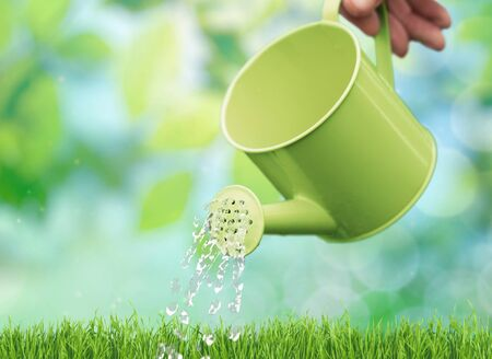 front  or back  yard: Watering Can.