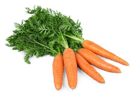 carrot: Zanahoria. Foto de archivo