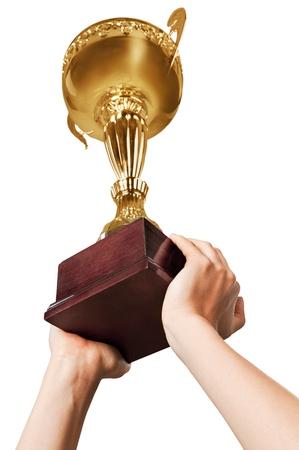 sports trophy: Trophy.