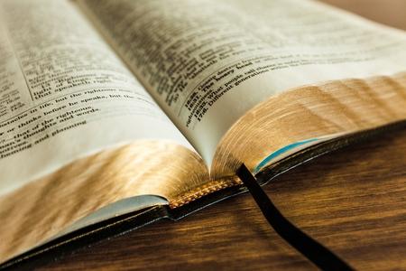 orando: Biblia.
