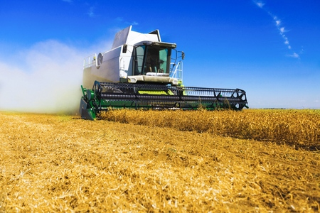 harvester: Harvester. Stock Photo