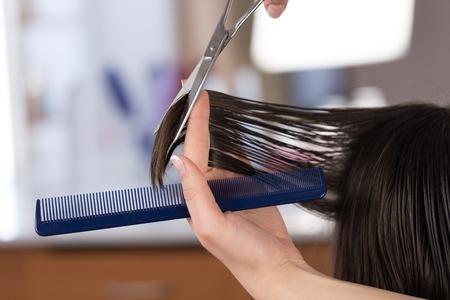 hairdresser's parlor: Hair. Stock Photo