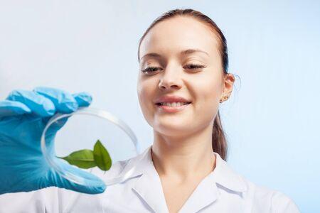 experimento: Botánica.