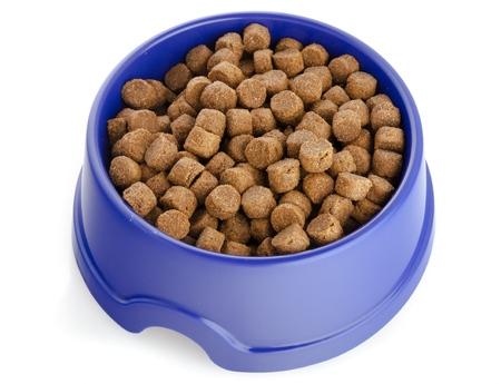 dog bowl: Dog Bowl.
