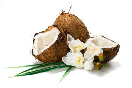 Kokosnuss. Standard-Bild