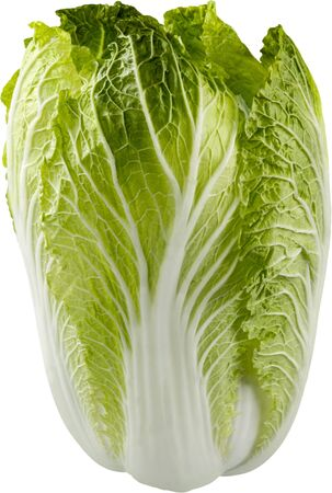 cabbages: Cabbage. Stock Photo