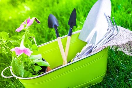 back hoe: Gardening Equipment. Stock Photo