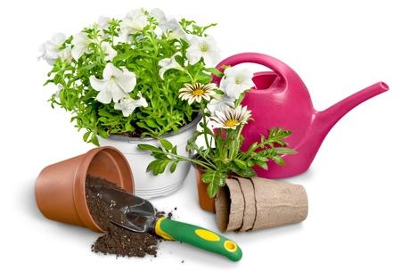 Gardening Equipment. Stockfoto