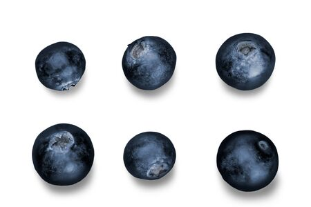 blueberries: Blueberry.