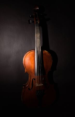 front view: Violin.