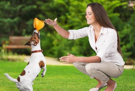obediencia: Perro.